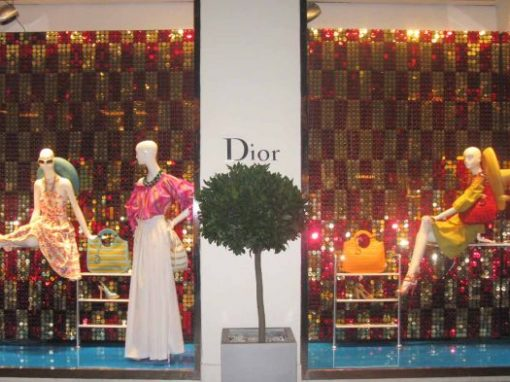 Christian Dior Window Display